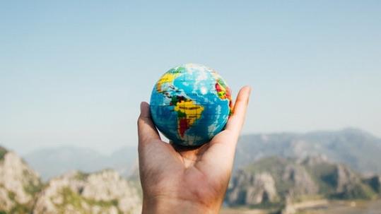 digital leader sustainability
